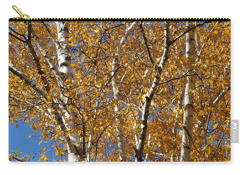 Birch Tree Carry-all Pouch featuring the photograph Birch Beauty by Anita Burgermeister