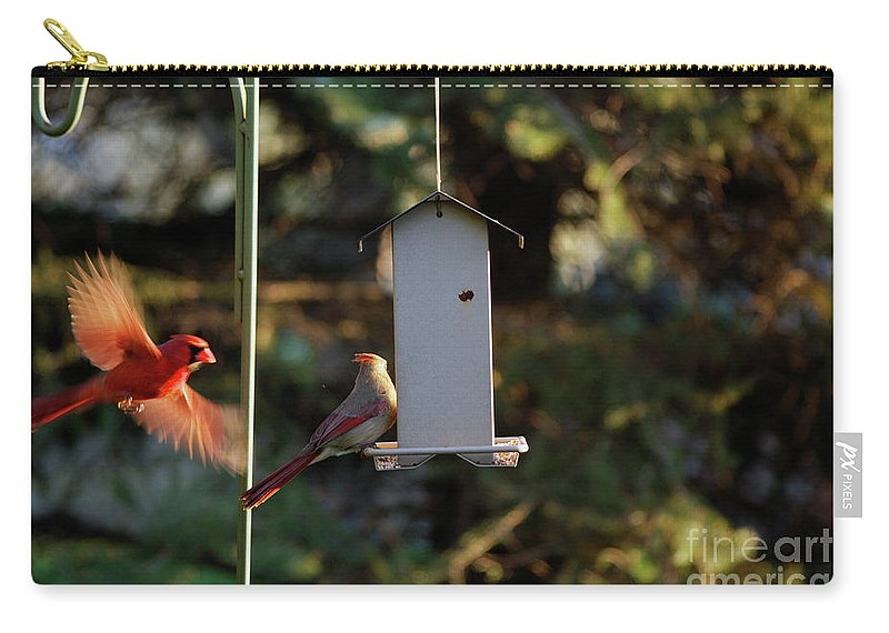 Animals Carry-all Pouch featuring the digital art Bird Feeder 02 by Thomas Woolworth