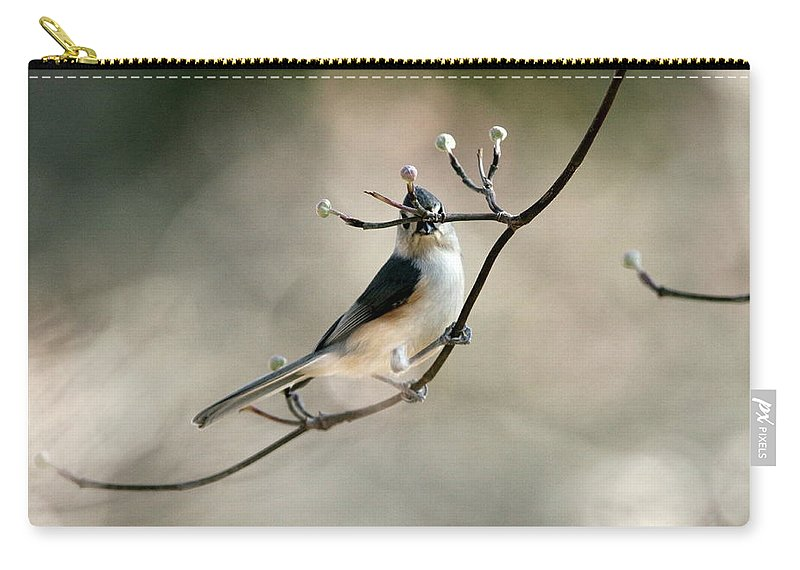 Nature Carry-all Pouch featuring the photograph Bird - Tufted Titmouse - Wind Rider by Travis Truelove