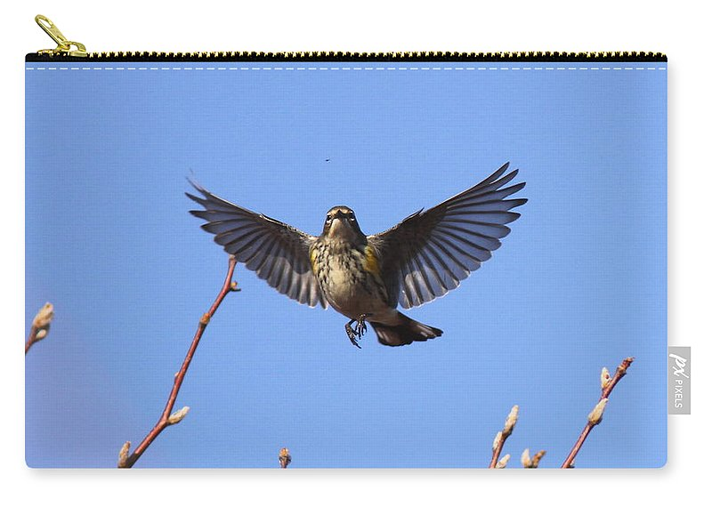 Yellow-rumped Warber Carry-all Pouch featuring the photograph Bird Vs Bug by Travis Truelove