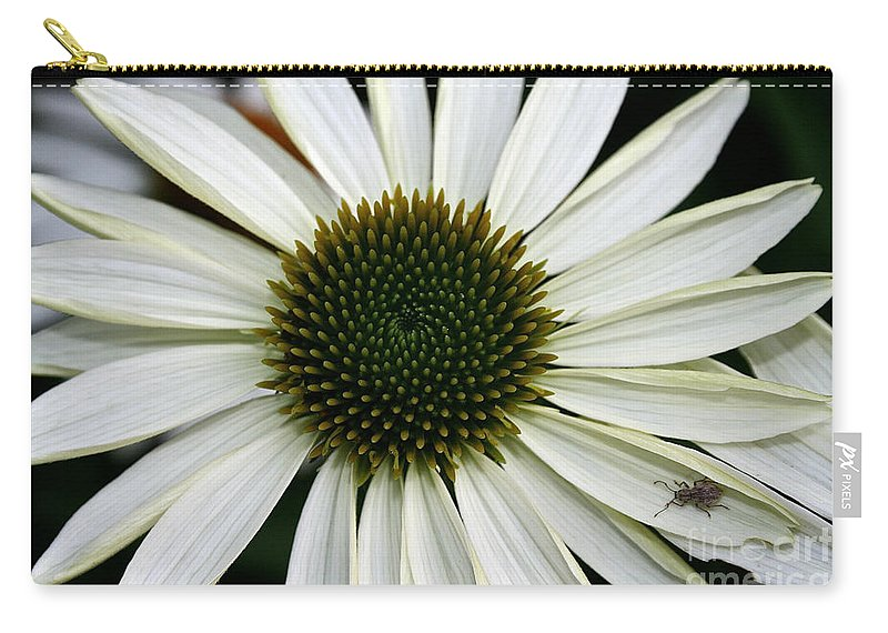 Plant Carry-all Pouch featuring the photograph Bitten By The Bug by Susan Herber