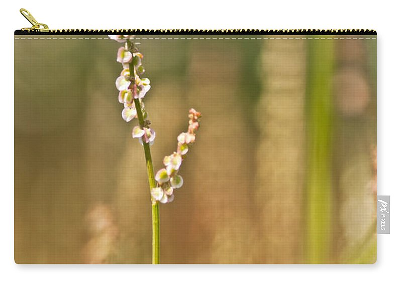 Bitterweed Carry-all Pouch featuring the mixed media Bitter Memories by Kim Henderson