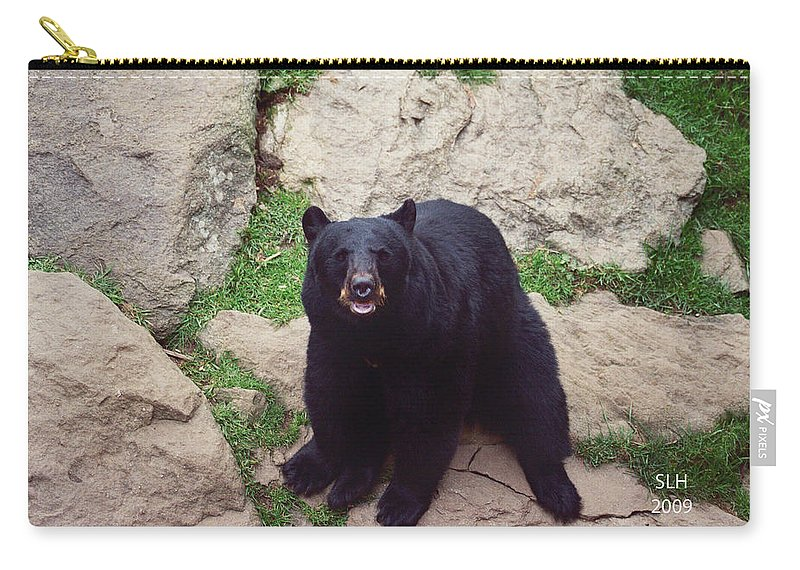 Lee Carry-all Pouch featuring the photograph Black Bear by Lee Hartsell