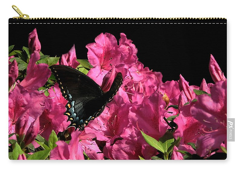 Nature Carry-all Pouch featuring the photograph Black Beauty In Flight by Peg Urban