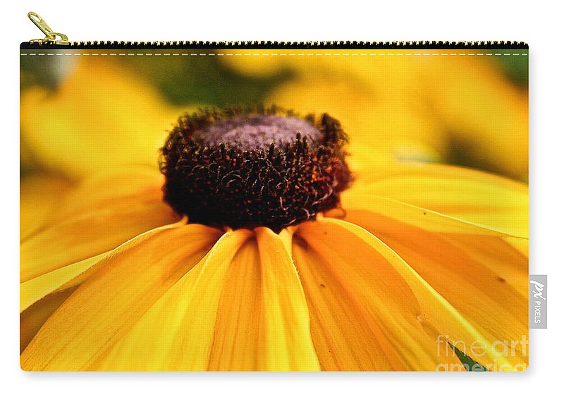 Plant Carry-all Pouch featuring the photograph Black Eyed Susan Summer by Susan Herber