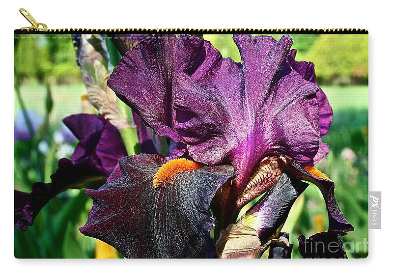 Plant Carry-all Pouch featuring the photograph Black Iris by Susan Herber