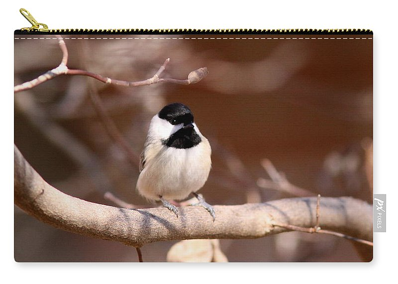 Chickadee Carry-all Pouch featuring the photograph Black Triangle by Travis Truelove