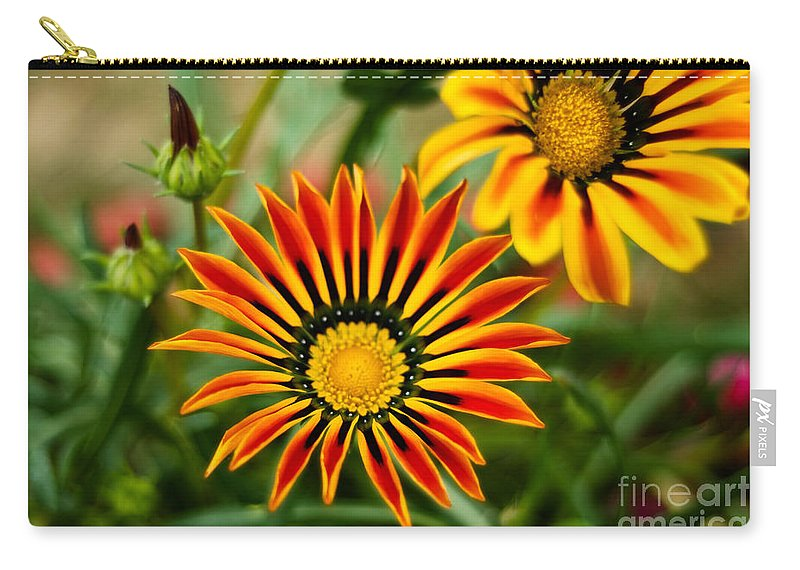Flower Carry-all Pouch featuring the photograph Blooming Beauty by Syed Aqueel