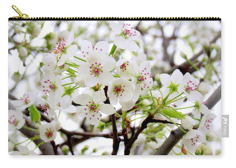 Blossoms Carry-all Pouch featuring the photograph Blooming Ornamental Tree by Kay Novy