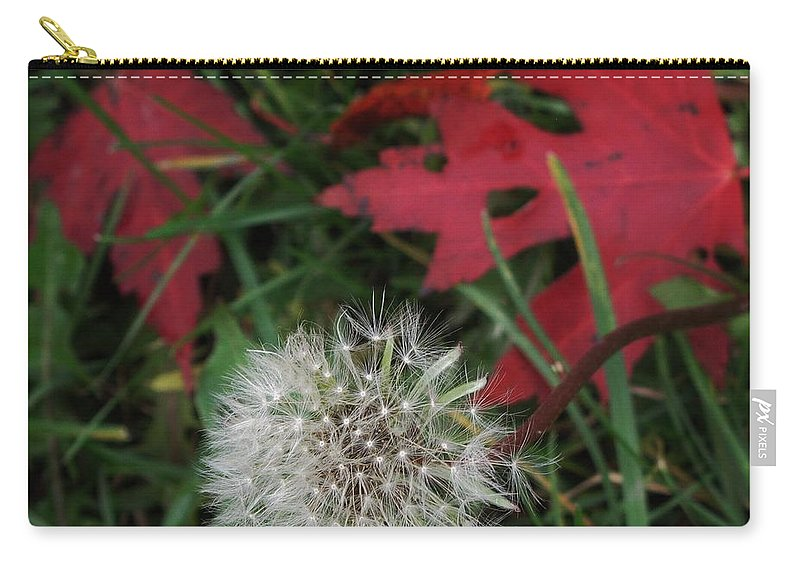 Dandelion Carry-all Pouch featuring the photograph Blow Away by Ian MacDonald