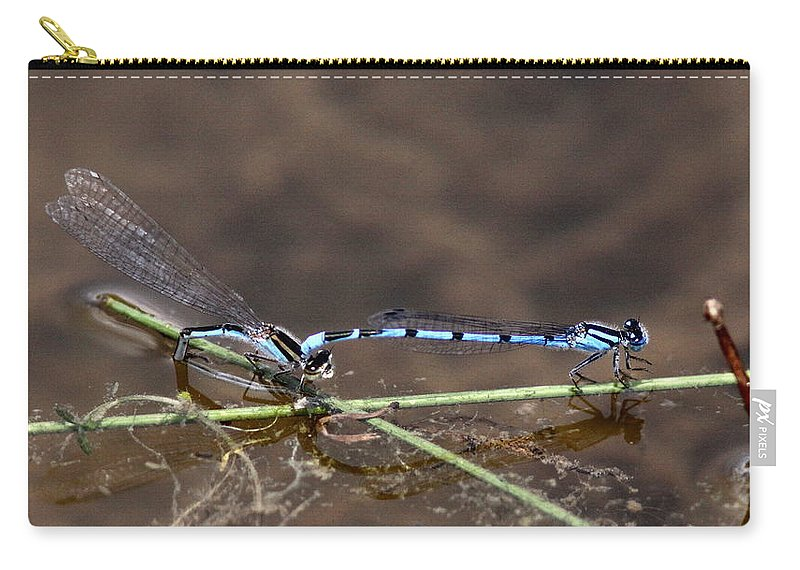 Blue Damselfly Carry-all Pouch featuring the photograph Blue Damsel by Travis Truelove