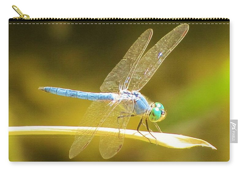 Dragonfly Carry-all Pouch featuring the photograph Blue Dragonfly by Michelle Cassella