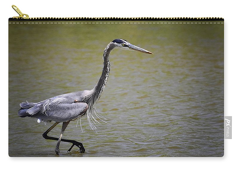 Great Blue Heron Carry-all Pouch featuring the photograph Blue Heron On The Hunt by Saija Lehtonen