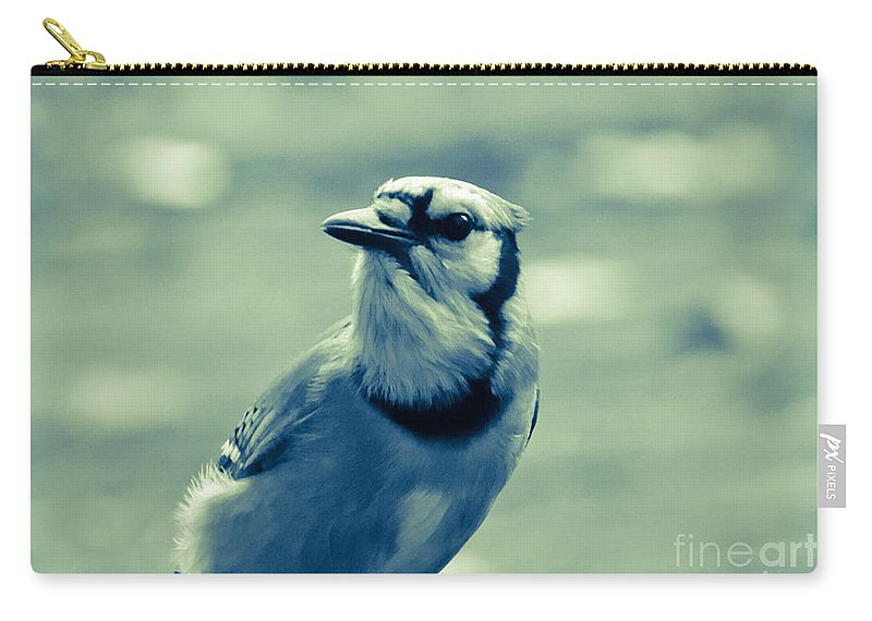 Blue Jay Carry-all Pouch featuring the photograph Blue Jay by Cheryl Baxter