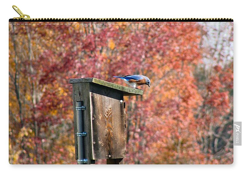 Blue Carry-all Pouch featuring the photograph Bluebird by Art Dingo