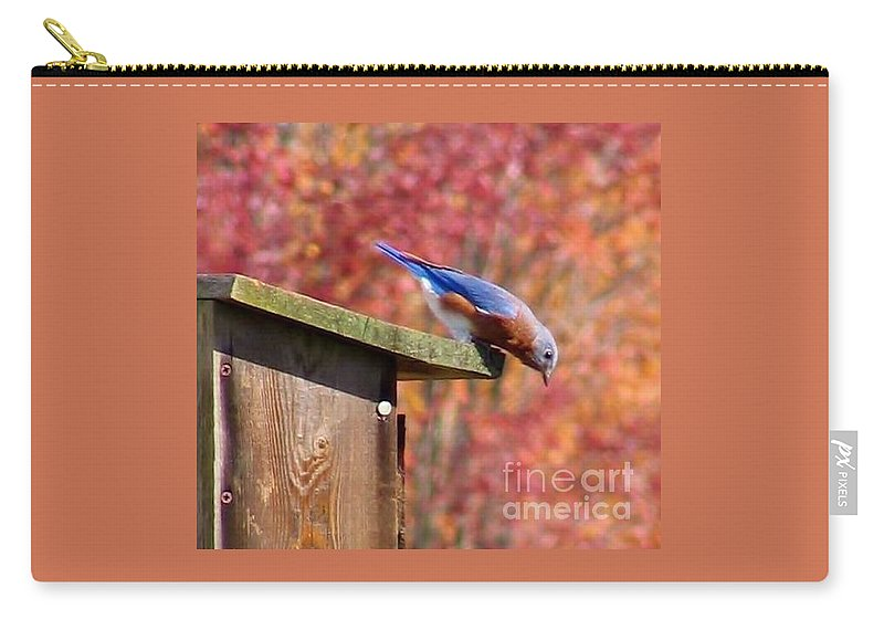 Blue Carry-all Pouch featuring the photograph Bluey by Art Dingo