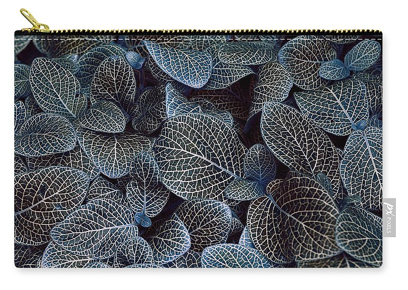Blue Carry-all Pouch featuring the photograph Bluey by Wayne Sherriff