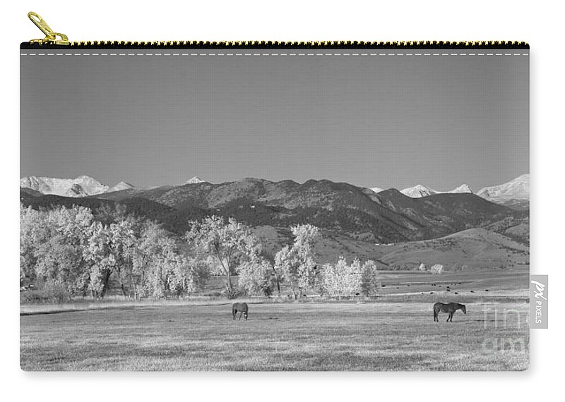 Panorama Carry-all Pouch featuring the photograph Boulder County Colorado Front Range Panorama With Horses Bw by James BO Insogna
