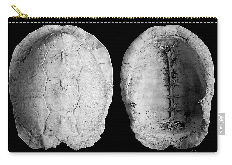 Photography Carry-all Pouch featuring the photograph Box Turtle Shell by Frederic A Reinecke