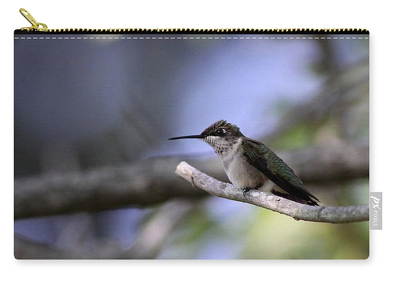 Hummingbird Carry-all Pouch featuring the photograph Breaktime by Travis Truelove