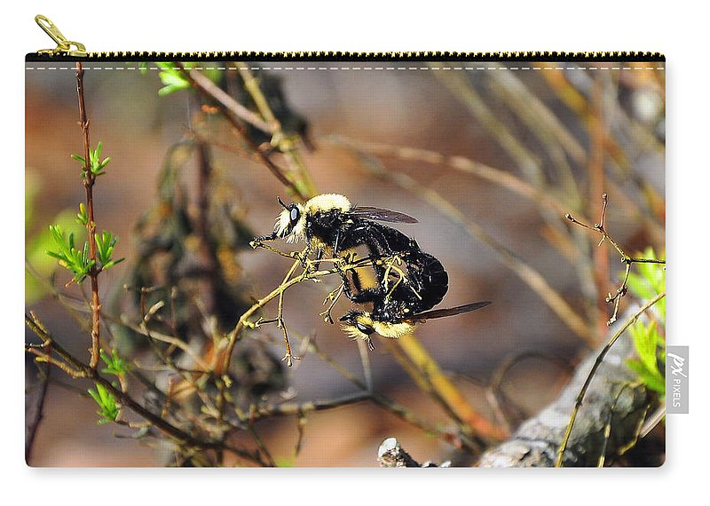 Bees Mating Carry-all Pouch featuring the photograph Breeding Bees by Al Powell Photography USA