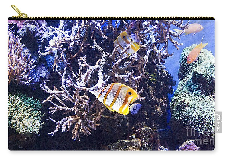 Montery Bay Aquarium Carry-all Pouch featuring the photograph Brilliant Fish Aquarium by Jim And Emily Bush