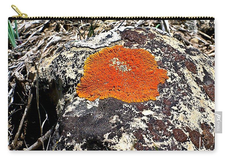 Brilliant Carry-all Pouch featuring the photograph Brilliant Orange Lichen by Douglas Barnett