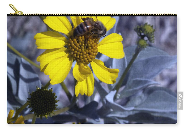 Brittlebush Carry-all Pouch featuring the photograph Brittlebush Bee by Linda Dunn