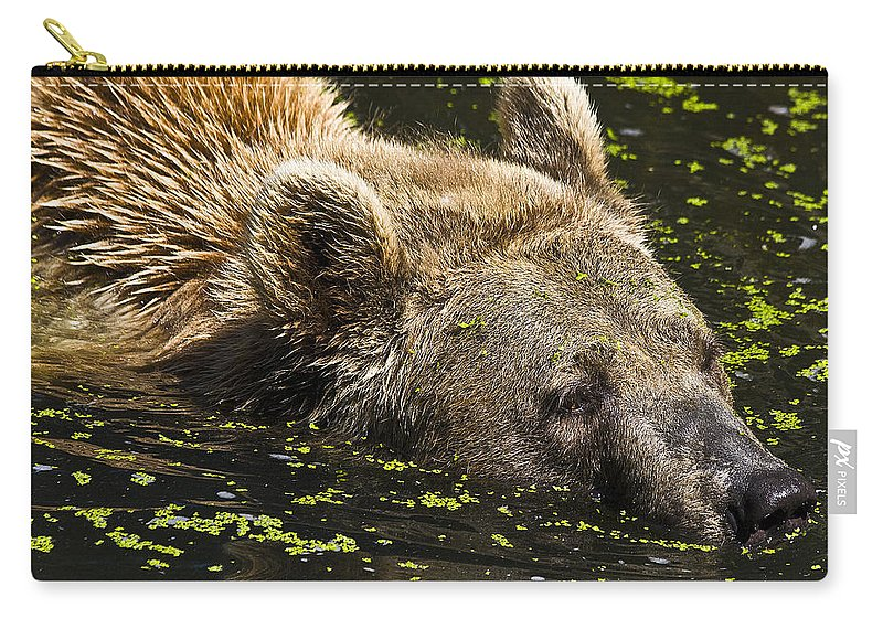 Nature Carry-all Pouch featuring the photograph Brown Bear Swimming by Heiko Koehrer-Wagner