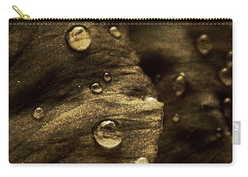 Nature Carry-all Pouch featuring the photograph Brown Drops Of Rain by Chris Berry