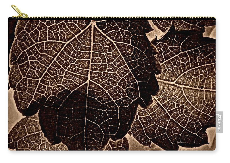 Earthy Carry-all Pouch featuring the photograph Brown Ivy by Chris Berry