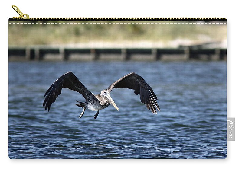 Pelican Carry-all Pouch featuring the photograph Brown Pelican - Low Flyer by Travis Truelove