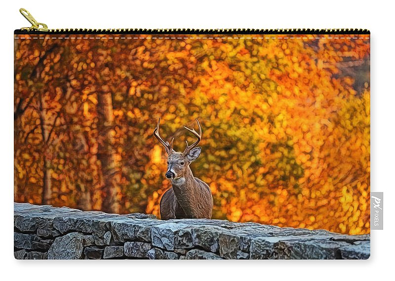 Metro Carry-all Pouch featuring the digital art Buck Digital Painting - 01 by Metro DC Photography
