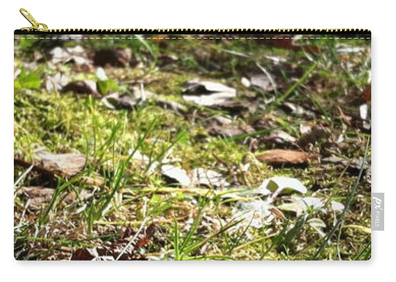Landscape Carry-all Pouch featuring the photograph Buckeye Lakeview by Trish Hale
