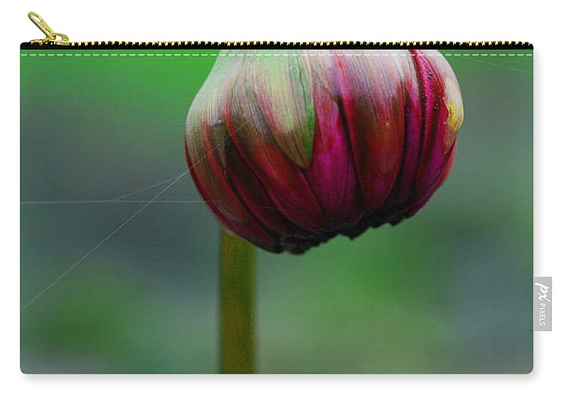 Bud Carry-all Pouch featuring the photograph Budding Potential by Marie Jamieson