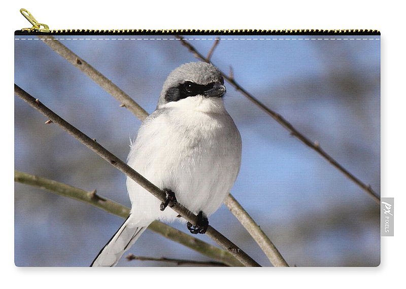 Loggerhead Shrike Carry-all Pouch featuring the photograph Built To Kill by Travis Truelove