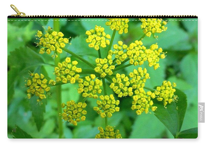 Flower Carry-all Pouch featuring the photograph Burst Of Flowers by Meandering Photography