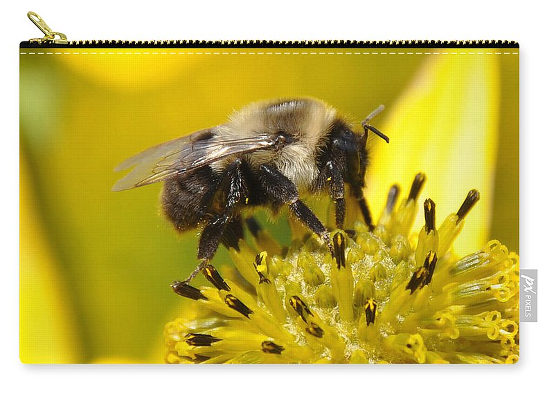 Bee Carry-all Pouch featuring the photograph Busy Bee by Christine Stonebridge