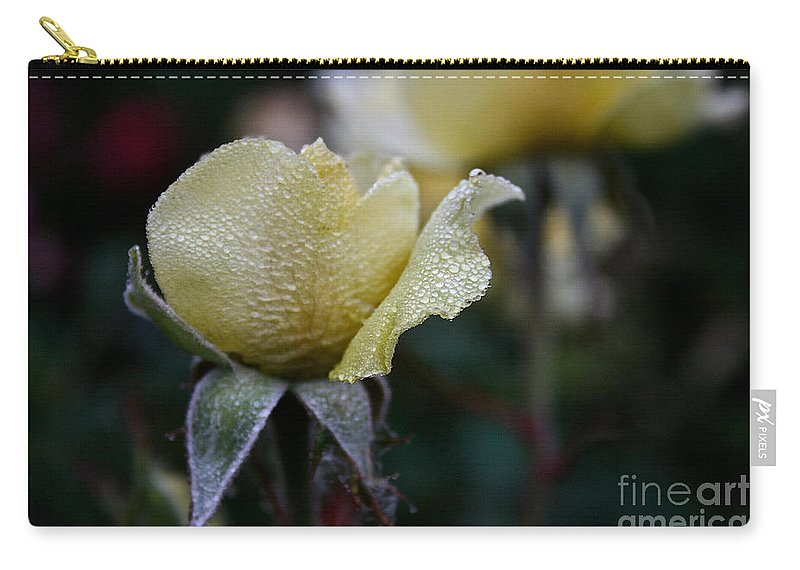 Flower Carry-all Pouch featuring the photograph Buttercream Petals by Susan Herber