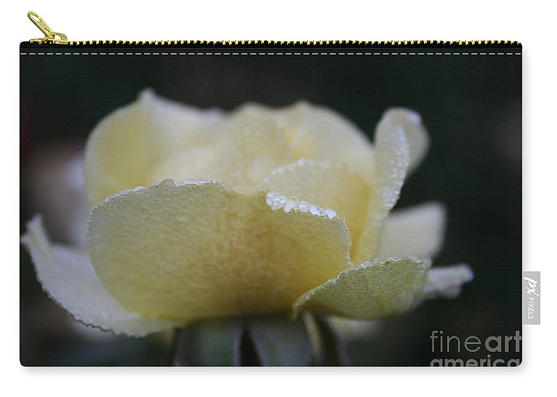 Flower Carry-all Pouch featuring the photograph Butterdrops by Susan Herber