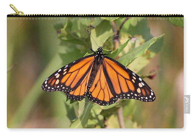 Monarch Carry-all Pouch featuring the photograph Butterfly - Monarch - Resting by Travis Truelove