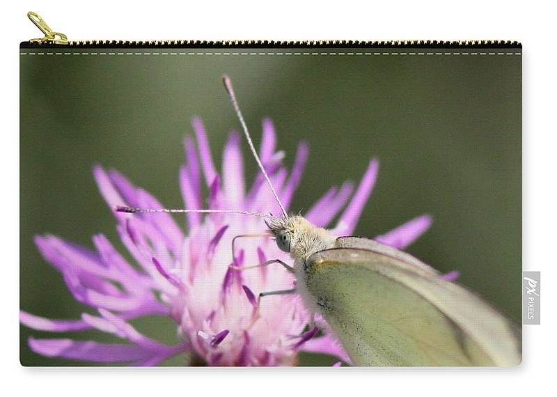 Swallowtail Butterfly Carry-all Pouch featuring the photograph Butterfly - Plain And Simple by Travis Truelove