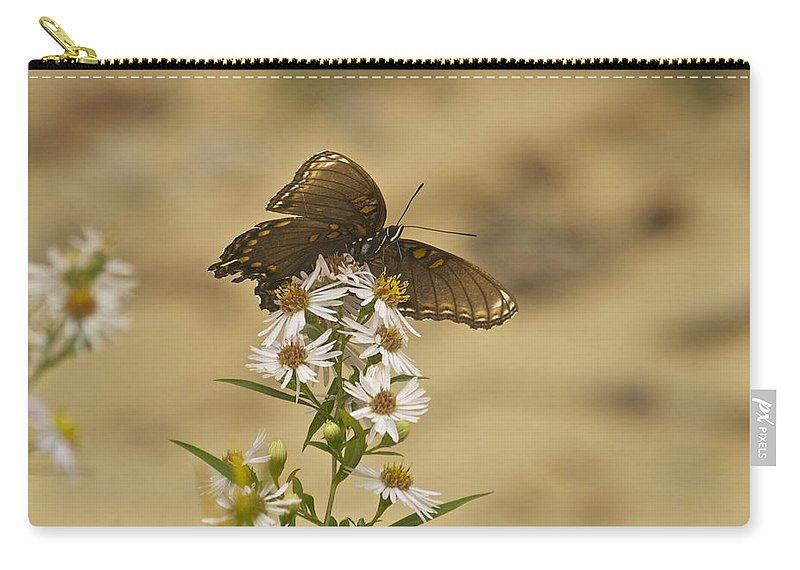 Butterfly Carry-all Pouch featuring the photograph Butterfly 3322 by Michael Peychich