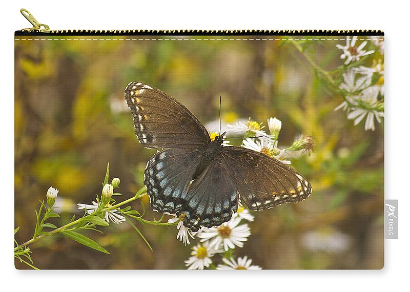 Butterfly Carry-all Pouch featuring the photograph Butterfly 3325 by Michael Peychich