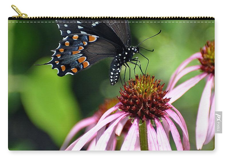 Butterflies Carry-all Pouch featuring the photograph Butterfly And Coine Flower by Marty Koch
