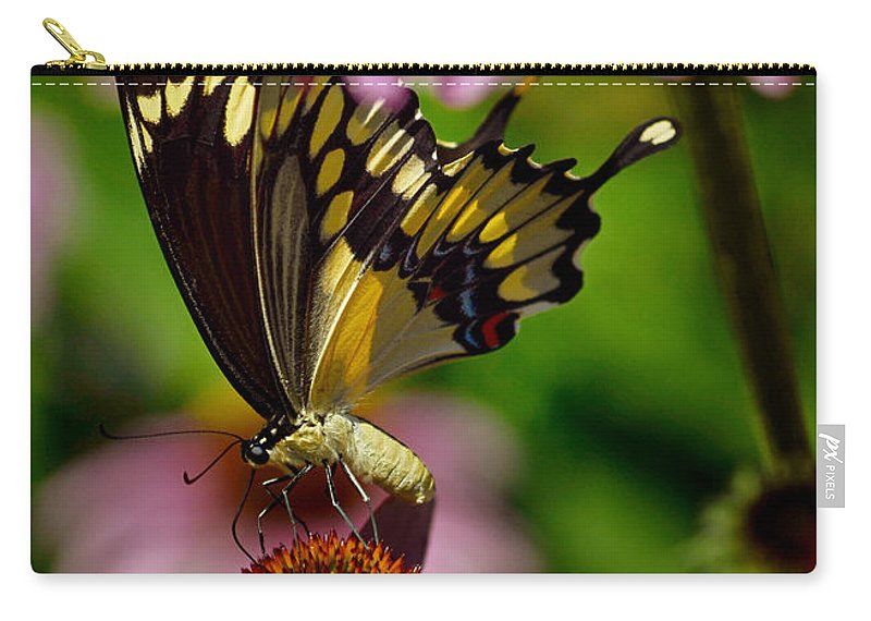 Color Photography Carry-all Pouch featuring the photograph Butterfly Heaven by Sue Stefanowicz