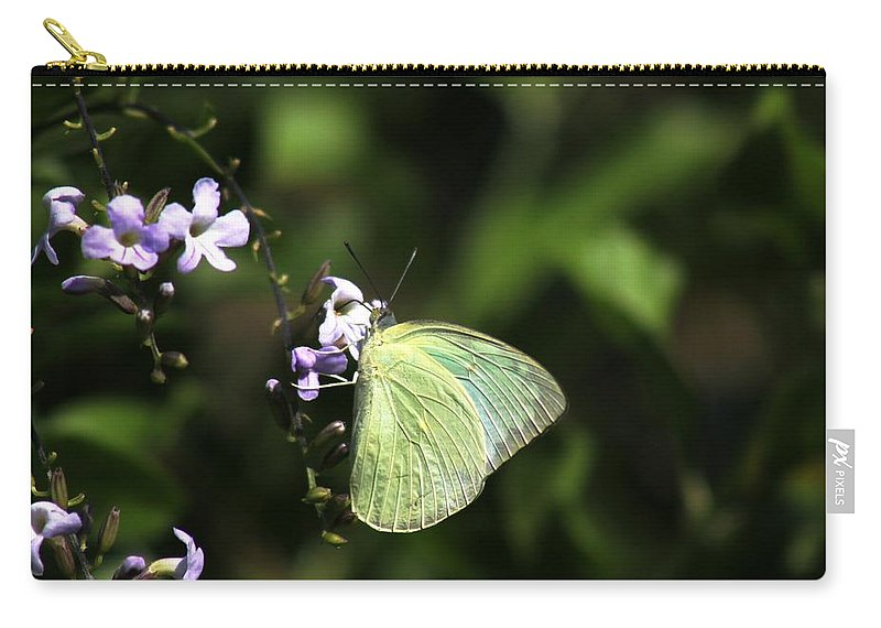 Butterfly Carry-all Pouch featuring the photograph Butterfly On Purple Flower by Ramabhadran Thirupattur