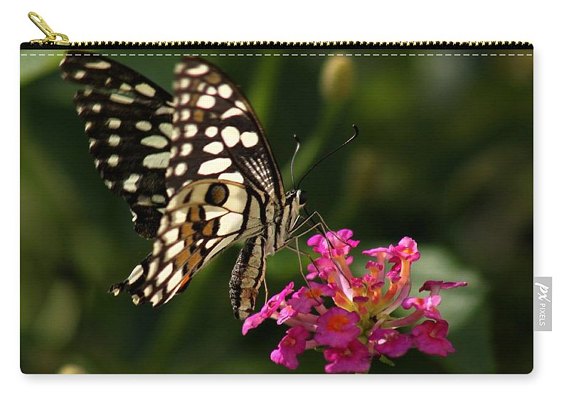 Butterfly Carry-all Pouch featuring the photograph Butterfly by Ramabhadran Thirupattur