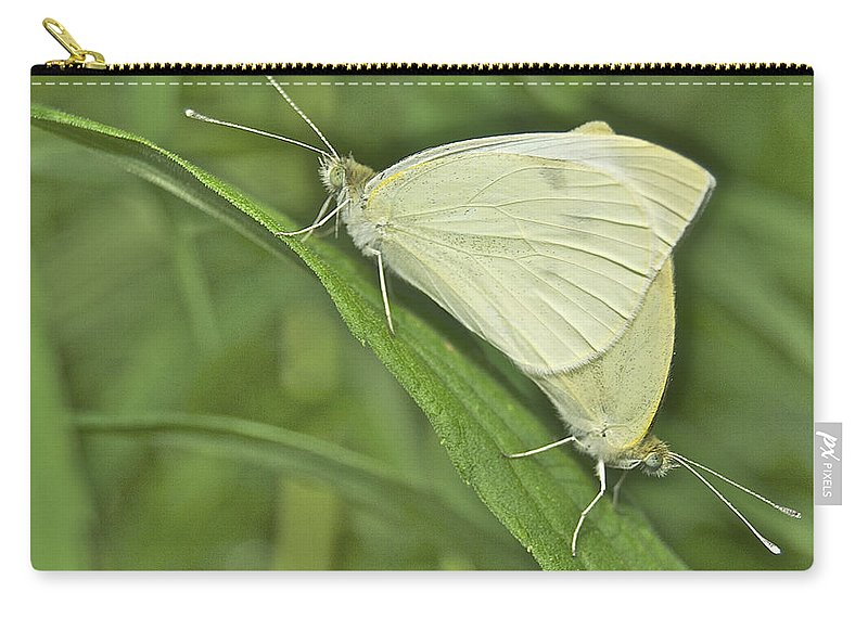 Animal Carry-all Pouch featuring the photograph Cabbage White Butterflies 5267 by Michael Peychich