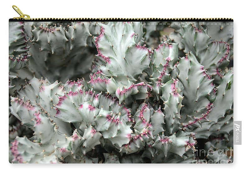 Cactus Carry-all Pouch featuring the photograph Cactus 58 by Cassie Marie Photography
